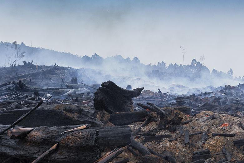 Australian bushfire image
