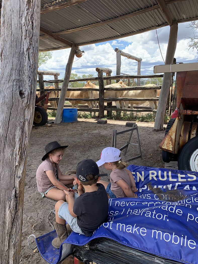 2020 Get Snapping competition entry from Bree Cahill featuring kids on the farm